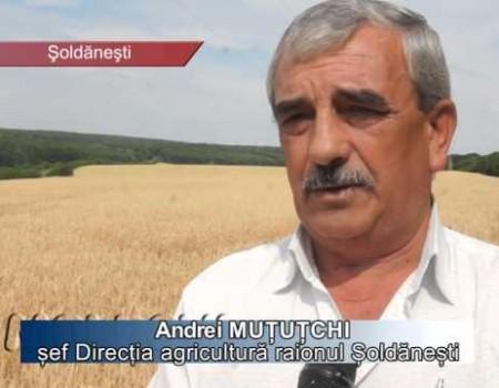 Agricultura Moldovei se apropie de Europa