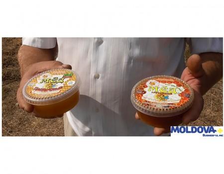 Mierea, o afacere nu prea dulce în Republica Moldova