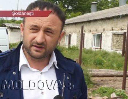 MOLDOVA+  Au carne pentru tot raionul. Statul să scoată lațul în care îi ține pe producători