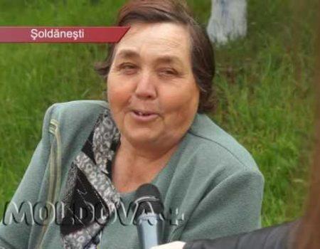 MOLDOVA+ Vândute și utilizate la întâmplare, chimicalele sunt periculoase