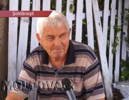 MOLDOVA+  Polița de asigurare: colac de salvare? Fără excepții?