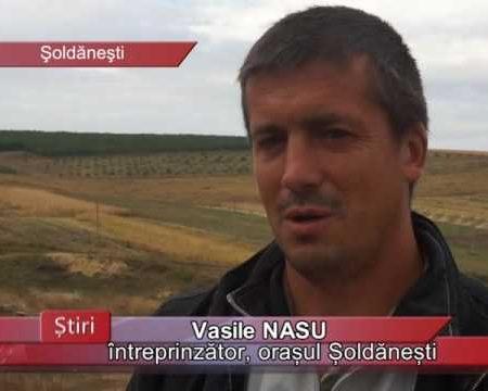 Proiecte europene pe câmpuri șoldăneștene