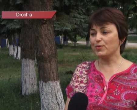 Merele moldovenesti