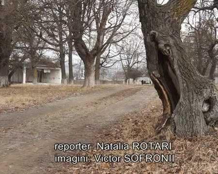 Orașul Șoldănești a rămas fără parc și fără bani