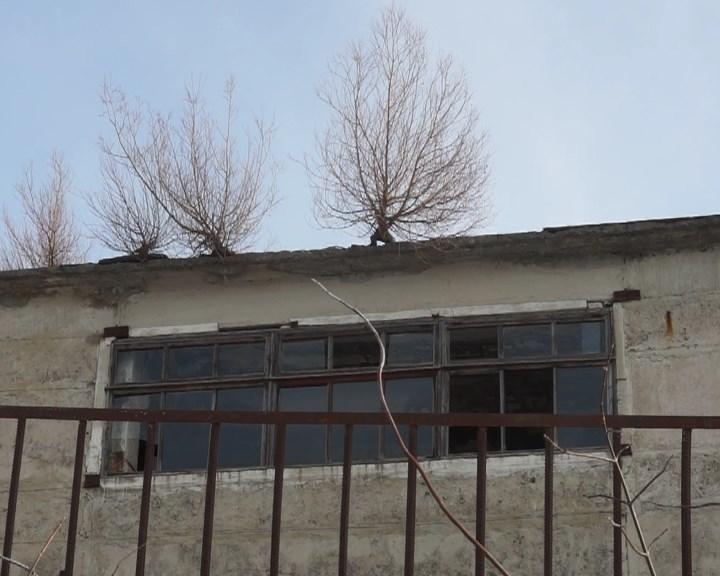 MOLDOVA+  Șomeri – mulţi, locuri de muncă — puţine