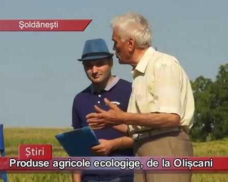 Produse ecologice, de la Olișcani
