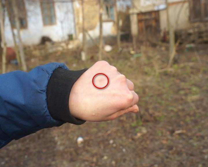 MOLDOVA+ Cu palmele bătute în cuie
