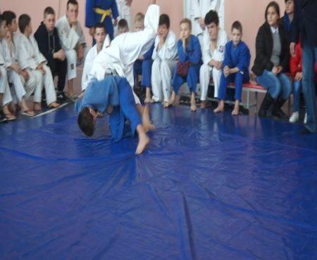 Turneu republican la judo, la Șoldănești
