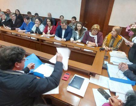 Consiliul raional Șoldănești, CONSTITUIT