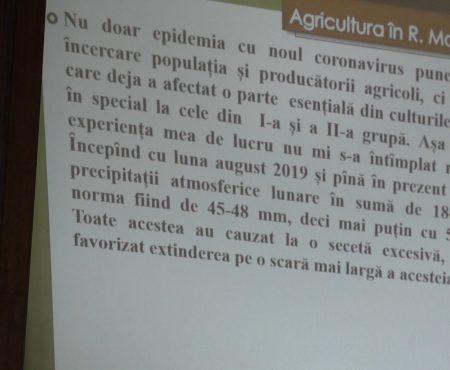 Consiliul raional îngrijorat de secetă